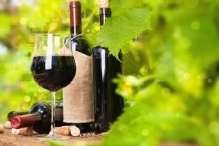 红酒杯和红酒瓶图片