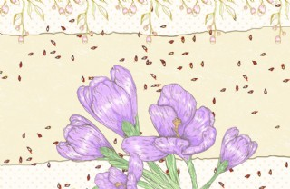 花朵背景墻